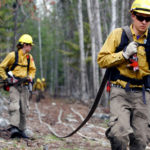 wildland firefighters pulling hose during training