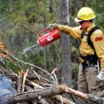 firefighter starting fire driptorch