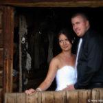 Horse Stable wedding on Farm