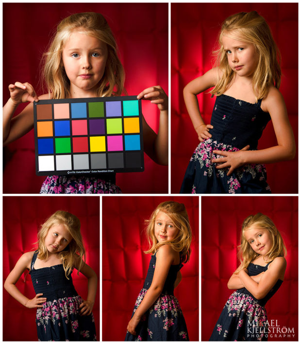 Young model modelling